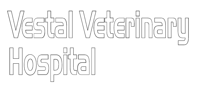 Vestal Veterinary Hospital